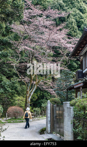 Kyoto, Japan. Walking along the Philosopher's Path in early spring - Stock Photo