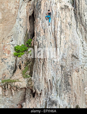 Young female rock climber, concept for overcoming obstacles. - Stock Photo