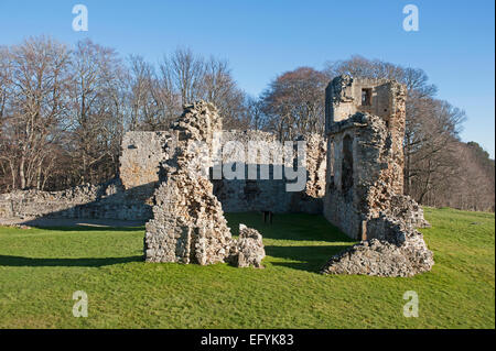 The South East section of Spynie Palace, Elgin.    9554 - Stock Photo