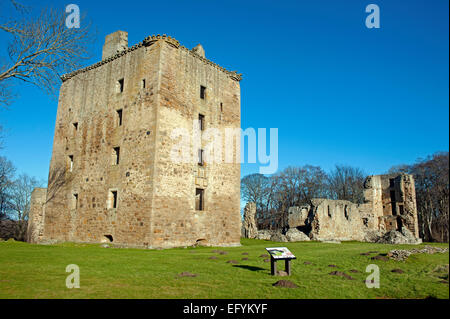 The Mighty David's Tower at Spynie Palace Elgin, the largest tower house by volume surviving in Scotland.   9558 - Stock Photo