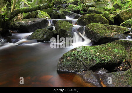 Tranquil waterfall in late summer/early autumn, Derbyshire UK. - Stock Photo