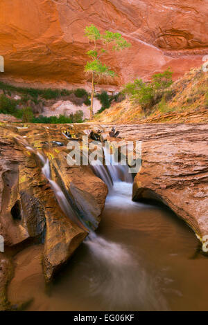 A waterfall in the lower section of Coyote Gulch in the Glen Canyon National Recreation Area of Utah. USA. spring. - Stock Photo