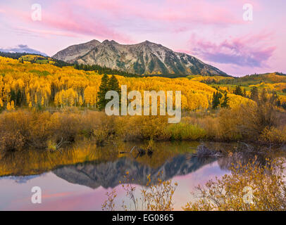 Gunnison National Forest, West Elk Mountains, CO: Dawn light on East Beckwith Mountain, from a beaver pond near - Stock Photo