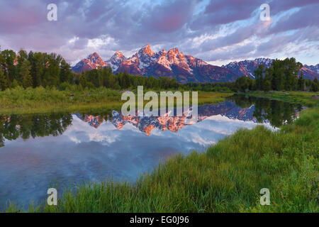 USA, Wyoming, Grand Teton National Park, Grand Tetons reflecting in beaver pond - Stock Photo