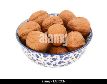 Walnuts in shells, in a blue and white porcelain bowl with a floral design, isolated on a white background - Stock Photo