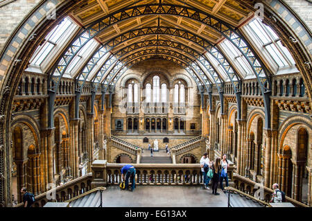 LONDON, UK - MAY 14, 2012: People visit Natural History Museum in London. With more than 4.1 million annual visitors - Stock Photo
