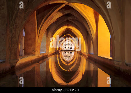 Baths of Lady Maria de Padilla (Los Banos de Dona Maria de Padilla), Alcazar, royal palace, Seville, Andalusia, - Stock Photo