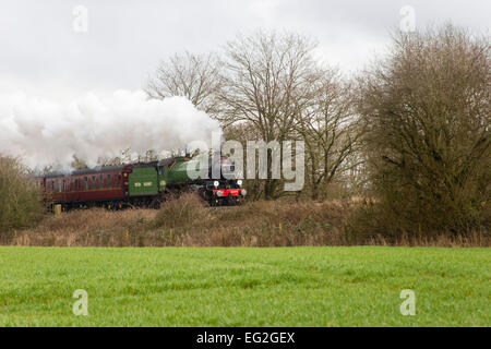B1 Class Locomotive 61306 Mayflower hauls the Cathedrals Express Valentine's Day Lunchtime Circular through the - Stock Photo