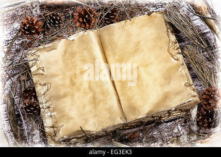 Opened old mystery book on natural forest wooden background with light vignette and space for text - Stock Photo