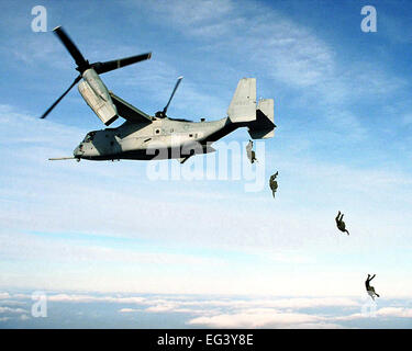 US MARINE CORPS parachutists free fall from an MV-22 Osprey at 10,000 feet above the drop zone at Fort A.P. Hill, - Stock Photo