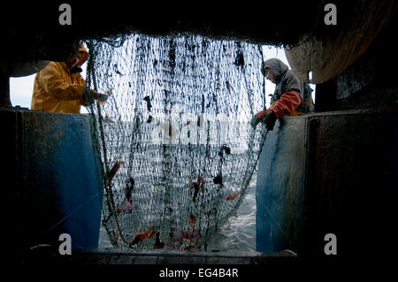 Fishermen hauling back trawler net on fishing trawler. Stellwagen Banks New England United States North Atlantic - Stock Photo