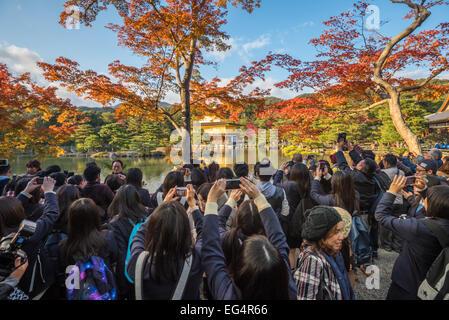 KYOTO, JAPAN - November, 18, 2014: Tourist crowd in front of Golden Pavilion, high season, Kyoto, Japan - Stock Photo