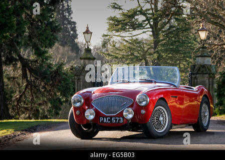Austin Healey 100M British Sports car from the 1950's - Stock Photo
