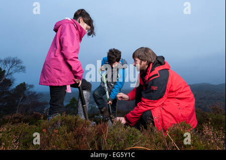 Children from Lochinver primary school being shown how to plant trees on moorland at Culag Wood, Sutherland, Highlands, - Stock Photo