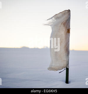 Scarecrow canvas flag in snow field in wind. - Stock Photo