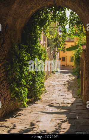 Old streets of greenery a medieval Tuscan town. - Stock Photo
