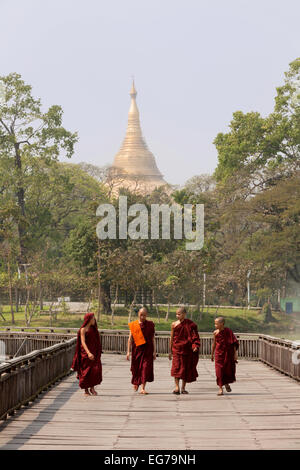 Four young buddhist moks walking at Kandawgyi Lake; The Shwedagon Pagoda in the background, Yangon, Myanmar ( Burma - Stock Photo