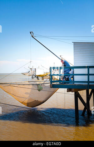 Man using net to remove catch from carrelet net on traditional fishing hut. - Stock Photo