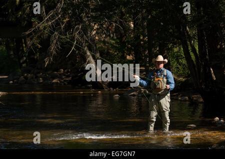 Colorado Fly fisherman - Stock Photo