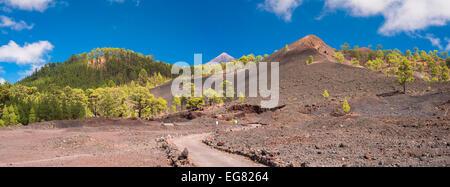 Path leading past Montana Boca Cangrejo, Tenerife, towards Montana de Chinyero, with Teide and Pico Viejo in the background