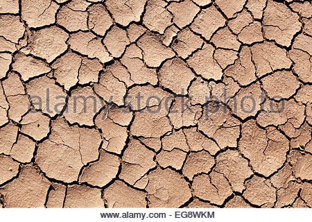 Natural texture cracked mud in dry river bed Arizona - Stock Photo