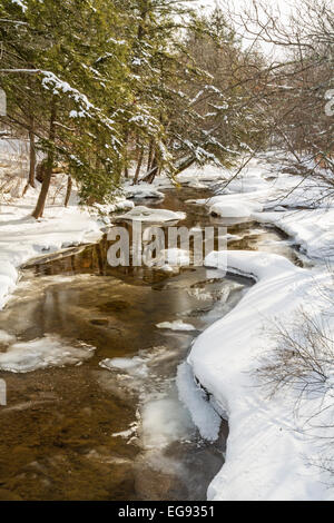 Trees reflected in half frozen Platte Kill in Delaware County in the Catskills Mountains of upstate New York - Stock Photo