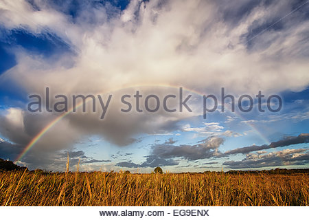 Italy, Lazio, Latina, Lago Dei Monaci, Scenic view of rainbow over field - Stock Photo
