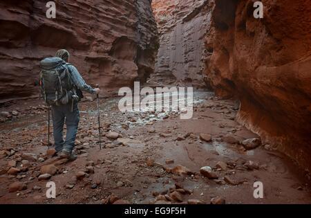 USA, Utah, Moab, Hiker in Professor Creek Narrows - Stock Photo