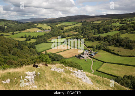 View over farms and Black Mountain from Carreg Cennen Castle, Llandeilo, Brecon Beacons, Carmarthenshire, Wales, - Stock Photo