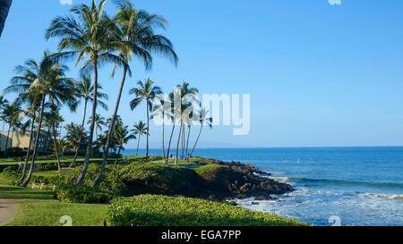 Ulua Beach, Wailea, Maui, Hawaii - Stock Photo