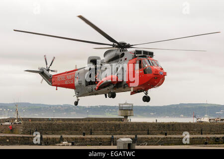 Royal Navy Sea King helicopter Rescue 177 lands at Armed Forces Day, Carrickfergus 25/06/2011 - Stock Photo
