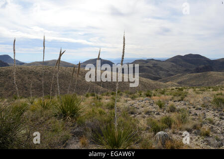Scenic drive along the Rio Grande River in Big Bend Ranch State Park - Stock Photo