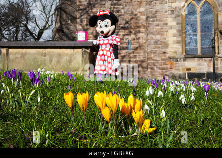 Minnie mouse in church gardens - Stock Photo
