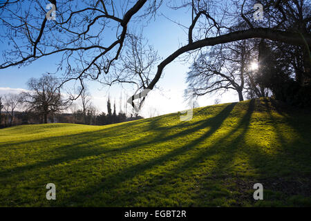 A park during late afternoon - Cherry Hill Park, Ely, Cambrigeshire, England - Stock Photo