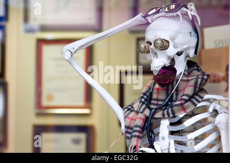London, UK. 22nd February, 2015. A skeleton in an osteopath is wrapped  up with a scarfe from the cold weather. - Stock Photo