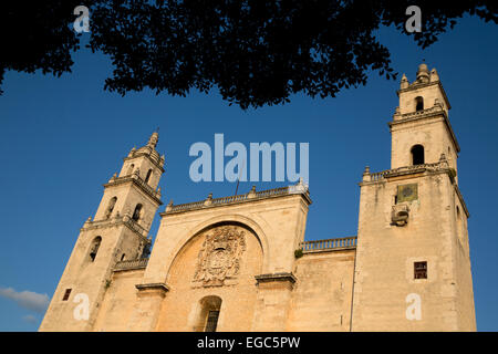 Catedral de San Ildefonso, Merida, Yucatan, Mexico - Stock Photo