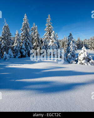 Snow-covered winter landscape, Harz National Park, near Torfhaus, Lower Saxony, Germany - Stock Photo