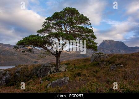 Slioch, Loch Maree, Wester Ross, Scotland, United Kingdom - Stock Photo