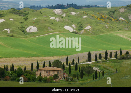 Crete Senesi, typical Tuscan landscape with clay hills and cypresses, Val d'Orcia, Orcia valley, UNESCO World Heritage - Stock Photo