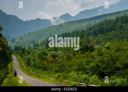 Road to Mount Galunggung volcano, West Java, Indonesia. - Stock Photo