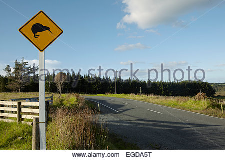 Kiwi warning sign at a road, North Island, New Zealand - Stock Photo