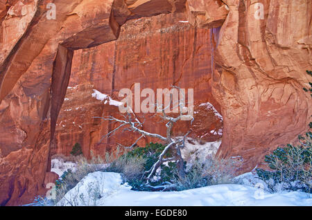 Pine Tree Arch in Arches National Park during Winter, Utah, United States. - Stock Photo