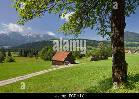 Rading near Windischgarsten, Totes Gebirge, Upper Austria, Austria - Stock Photo