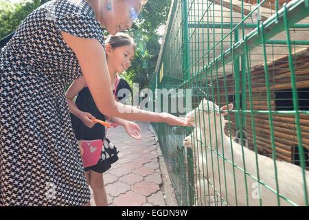 Kok Tobe zoo, Almaty, Kazakhstan - Stock Photo