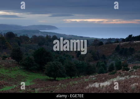 A view towards Minehead from Beacon Hill on the Quantocks, Somerset. - Stock Photo