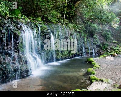 Kanagawa Prefecture, Japan - Stock Photo