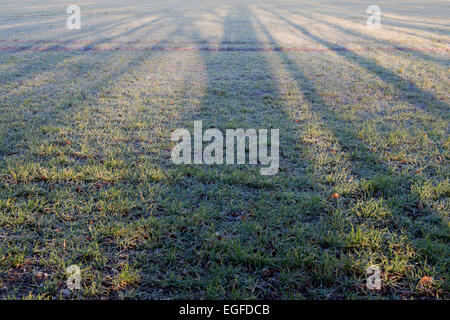 Long Tree shadows on a field in early moening winter sunlight. Oxfordshire, UK - Stock Photo