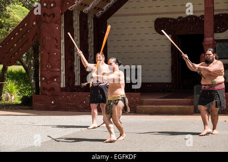 Te Pitowhenua group of performers act a traditional Maori welcome for tourists and visitors at the Waitangi treaty - Stock Photo