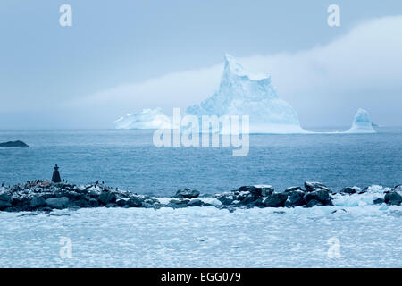 An iceberg floats in the distance off the coast of Point Wild, Elephant Island, Antarctica - Stock Photo