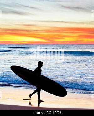 Surfer  walking on the beach at sunset. Portugal - Stock Photo